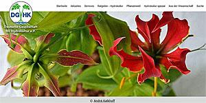 DGHK - Webseite