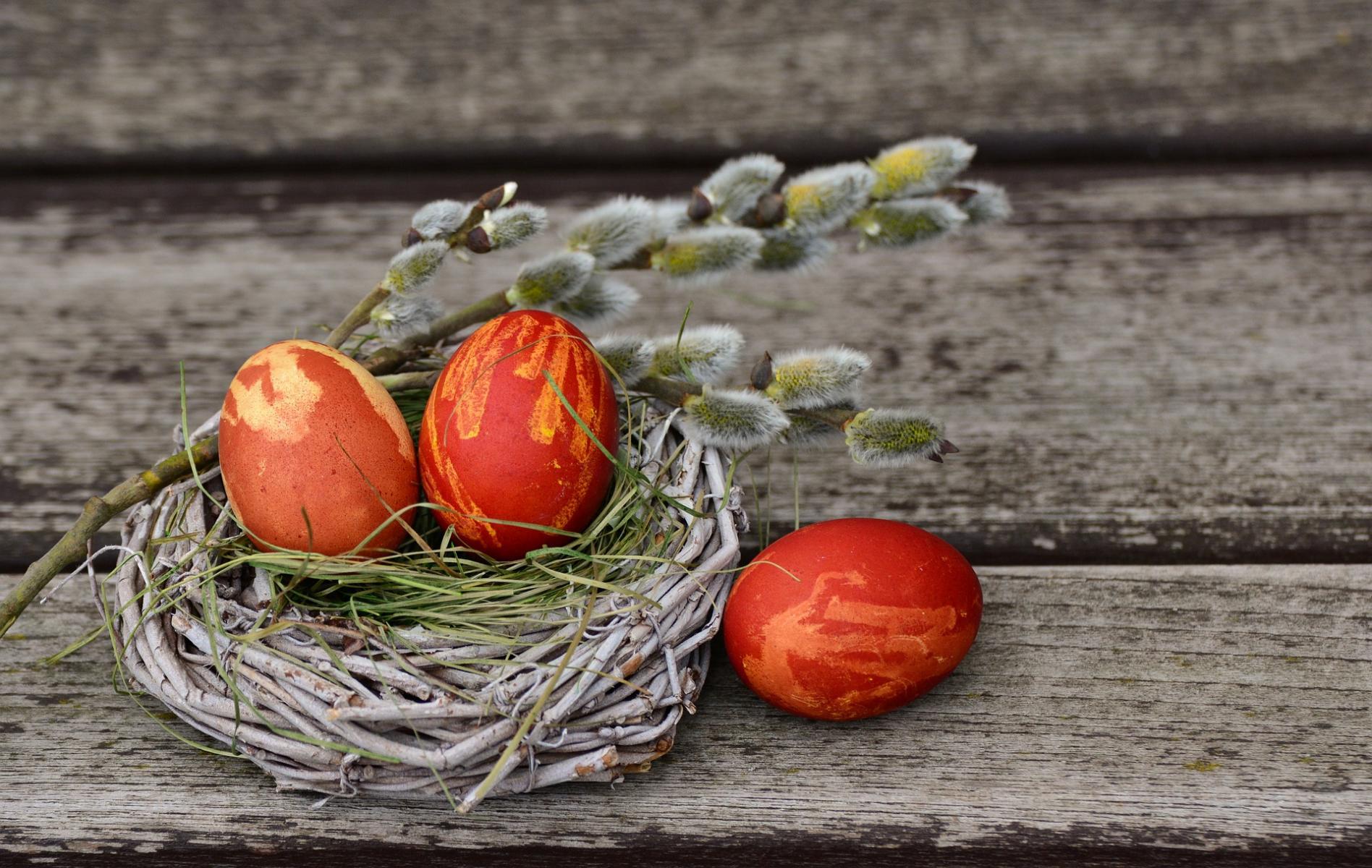 Eier gesucht - KLARA gefunden